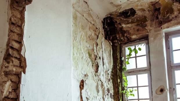 Инженер Дьяков рассказал об опасности образования плесени на стенах дома