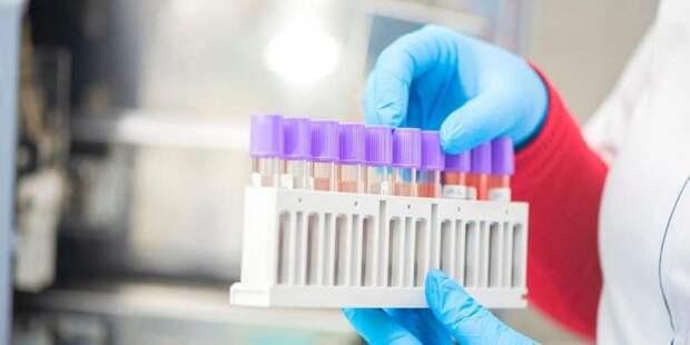 Анастасия Ракова: Иммунитет к коронавирусу обнаружен у 20% москвичей. Фото: mos.ru