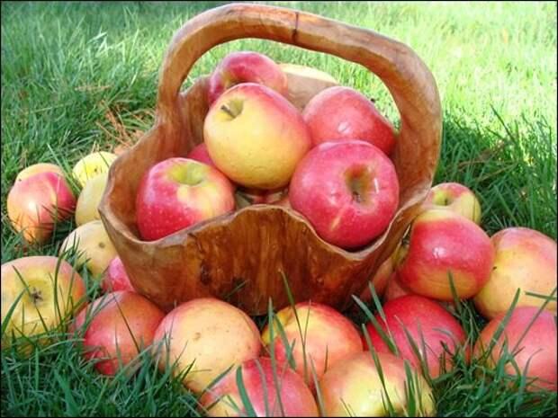 Яблочные маски для омоложения