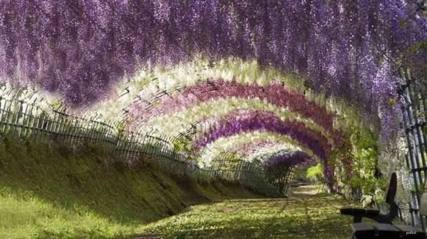 10 мест неземной красоты, которые действительно существуют наЗемле
