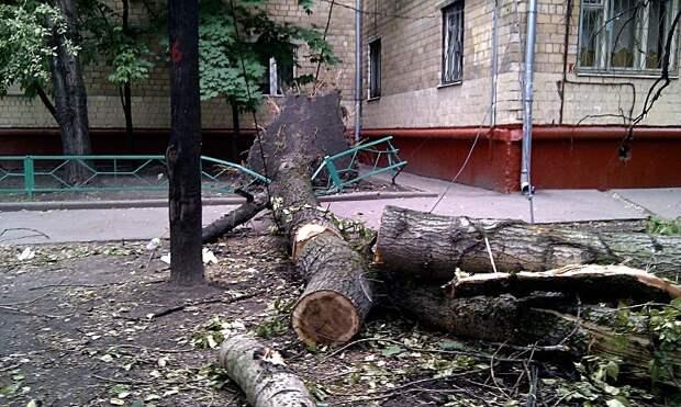Последствия ураганного ветра в Удмуртии, изменение подхода к учету бедности в России и признание сценаристов «Игры престолов»: что произошло минувшей ночью