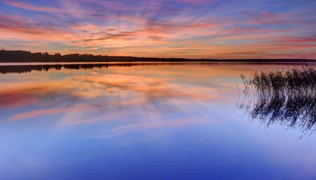 Госкомитет назвал причины гибели семьи на озере в Карелии
