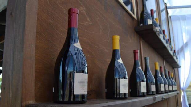 Мировое потребление вина рекордно сократилось в пандемию