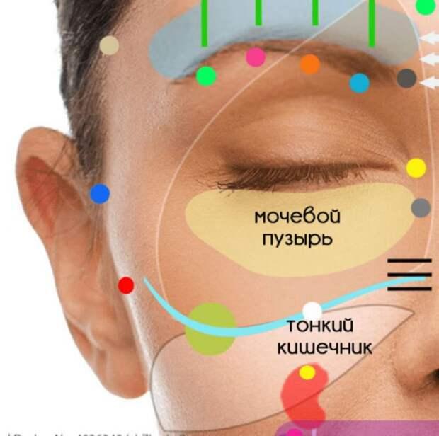 """""""Карта здоровья"""" на вашем лице. Морщины многое могут рассказать о скрытых проблемах"""