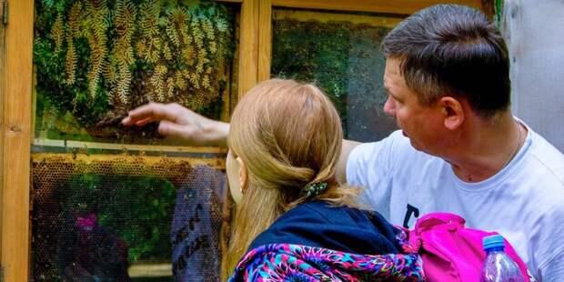 Музей русского импрессионизма открывает новые экскурсии