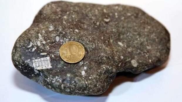 Артефакты истории: кто пользовался микрочипом 250 миллионнов лет назад?