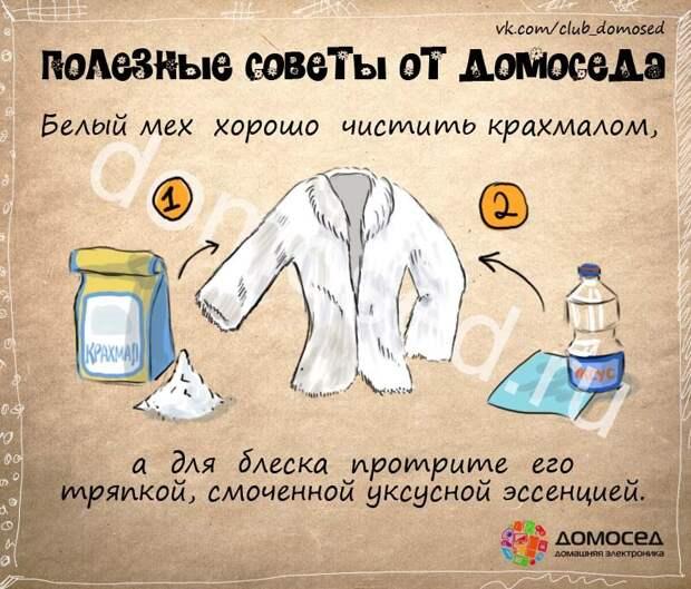 Чем почистить белый мех