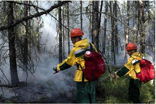 Путин оценил масштаб природных бедствий в России
