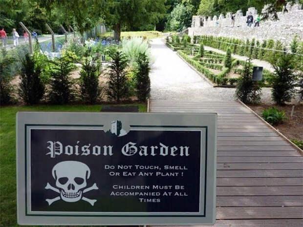 Многочисленные таблички в «Ядовитом саду» предупреждают посетителей об опасности