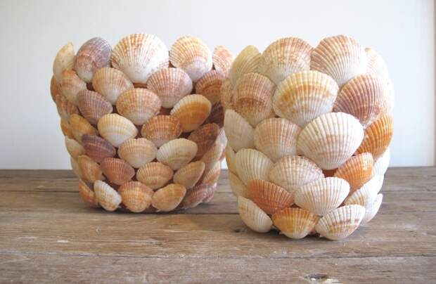 Ракушки морские: как стильно украсить комнаты и предметы интерьера (60 фото)