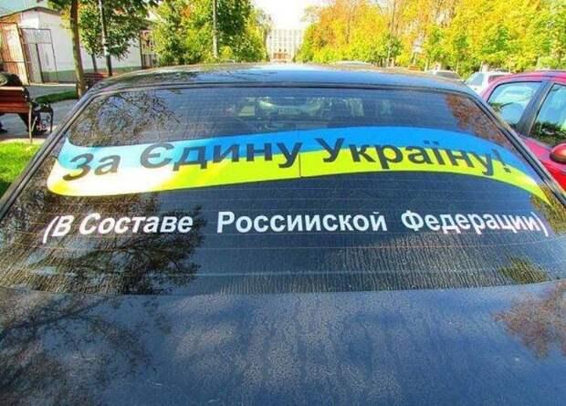 Вассерман рассказал, почему Украина вернется в состав России