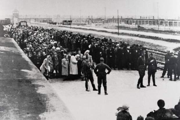 Узников концлагерей нацисты обривали наголо — зачем?