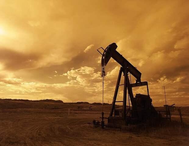Компания, допустившая разлив нефти в Удмуртии, возместила нанесенный природе ущерб