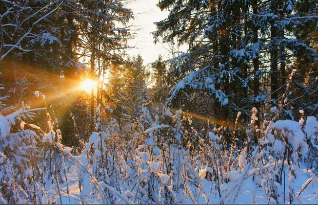 Красоты России (#640)