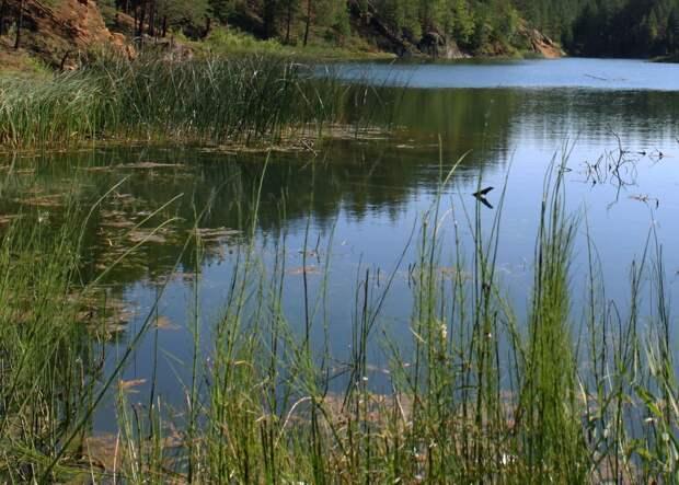Тело утонувшего молодого человека нашли в заброшенном карьере в Удмуртии