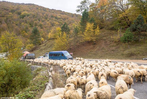Пробки на Военно-Грузинской дороге