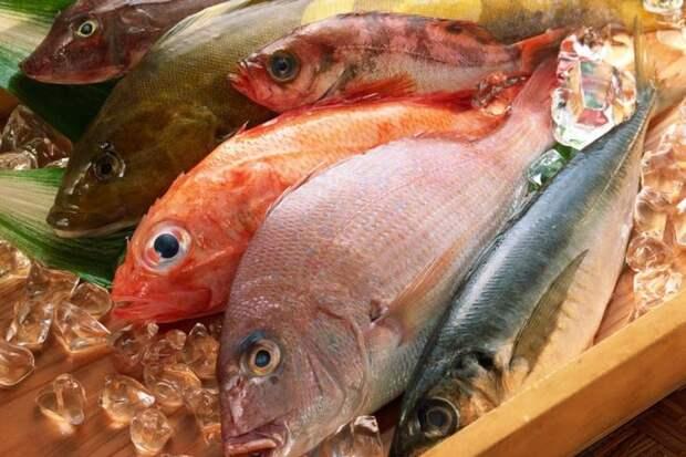 Рыбные мифы: чему не стоит верить