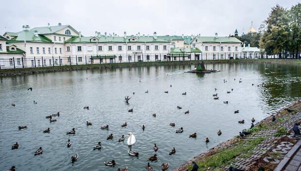 Облачная погода и до плюс 13 градусов ожидается в Подольске в понедельник