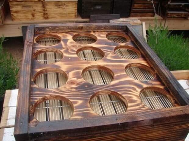 Сила лайфхаков: пчеловод сделал чудо конструкцию для сбора мёда