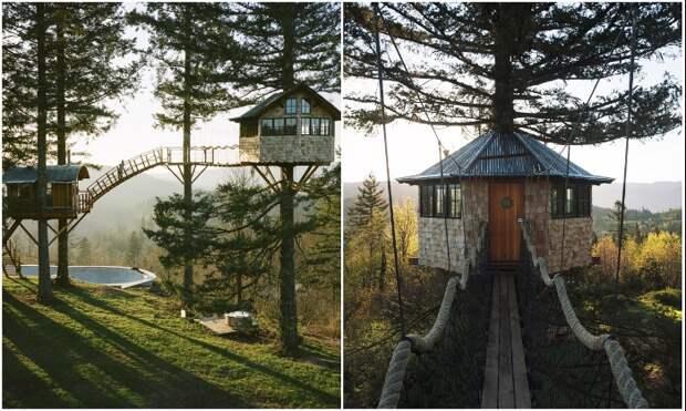 Сразу два домика на дереве построил Фостер Хантингтон, чтобы жить, наслаждаясь полной свободой и красотой (Колумбия, США).   Фото: rope-park.com.