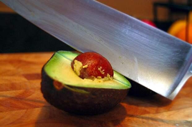 косточка от авокадо