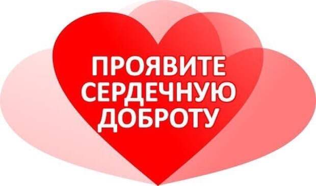 Если вы любите дарить подарки, то подарите шанс этому малышу! Шанс на жизнь, любимую семью, ласку, доброту!!!