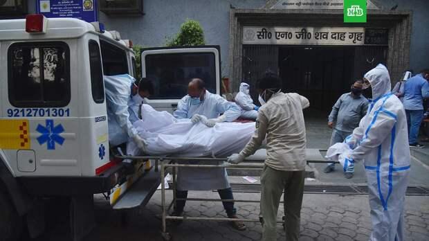 В Индии зафиксирован новый антирекорд смертности из-за COVID-19