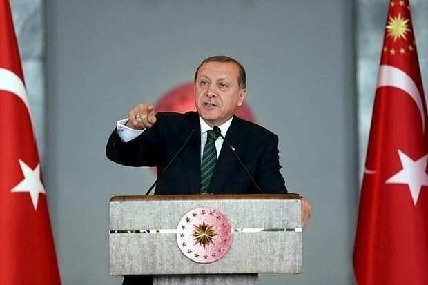 Эрдоган проклял правительство Австрии за солидарность с Израилем