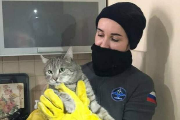 Спасатели вытащили кота из сантехнического шкафа в квартире в Юрловском проезде