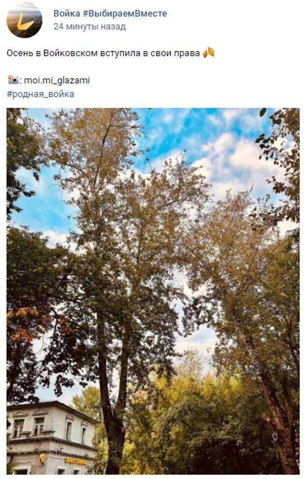 Фото дня: Войковский район окрашивается осенними красками