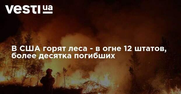 В США горят леса - в огне 12 штатов, более десятка погибших