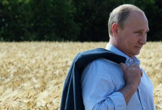 VA: решение Москвы ограничить экспорт зерна вызвало тревогу в мире