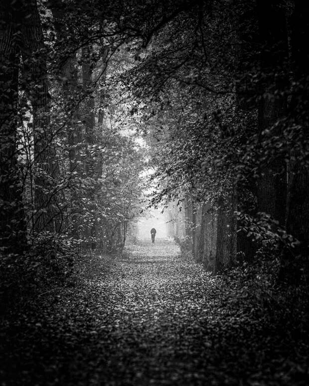 Getting lost is not a waste of time  by Christophe Staelens on 500px.com