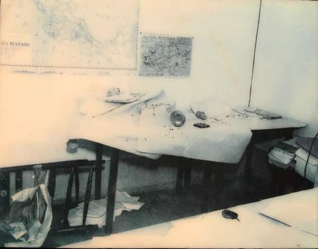 Убийство Льва Троцкого