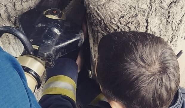 Девочка застряла между деревьев наПархоменко вНижнем Тагиле