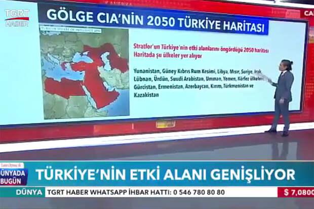 Карту с «турецкими» Крымом и Кубанью оценили в России