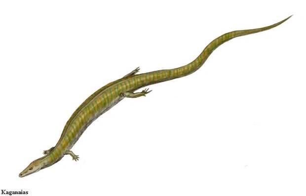 Каганаиас
