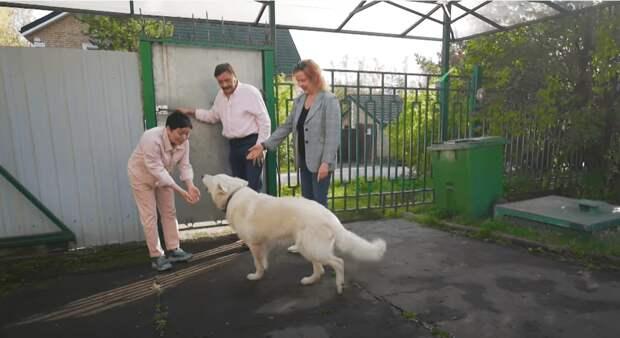 Слёзы счастья: Дмитрий Назаров трогательно отреагировал на результат работы «Идеального ремонта»