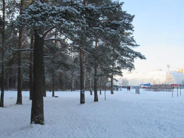 В Петербурге стоит настоящая зима!
