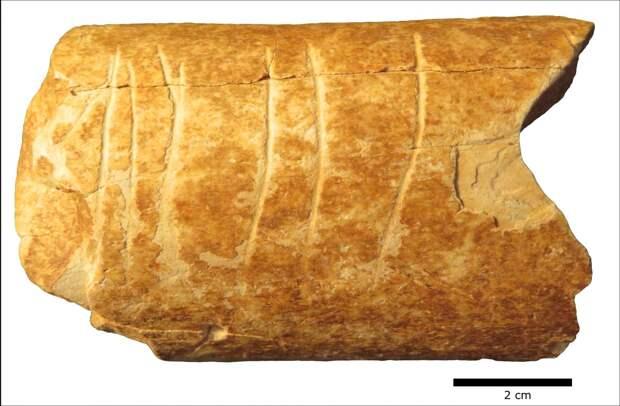 Найдено древнейшее символическое изображение