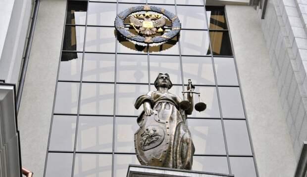 Особое мнение судей: за и против