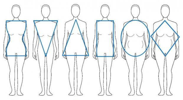 Типы телосложения. Соотношение роста и веса