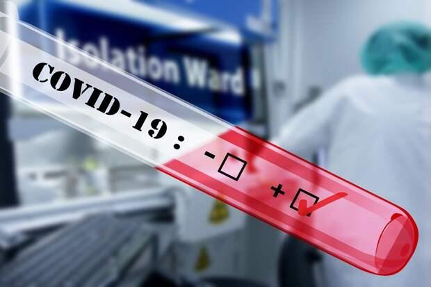 В России за сутки выявлено 20 498 новых случаев коронавируса