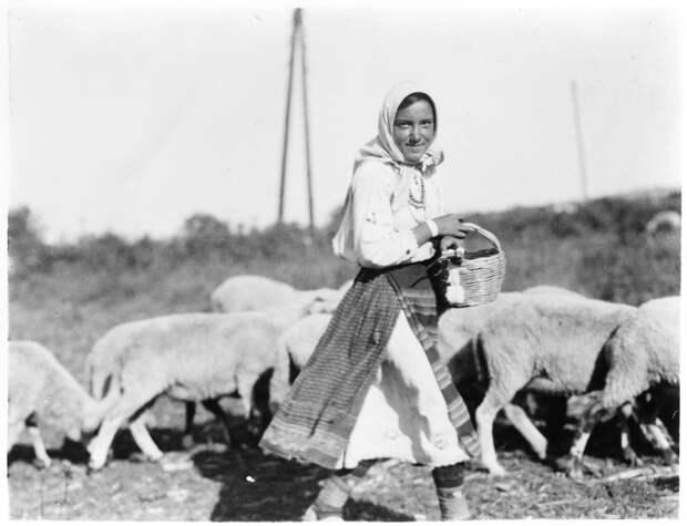 Крестьянка и овцы
