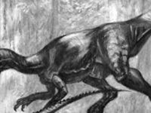 Настоящие дилофозавры съели бы Парк юрского периода в один присест