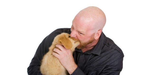 4. В округе Полдинг, штат Огайо, полицейские имеют право укусить собаку - но только если они думают, что это сможет ее успокоить абсурдные законы, законы сша, сша