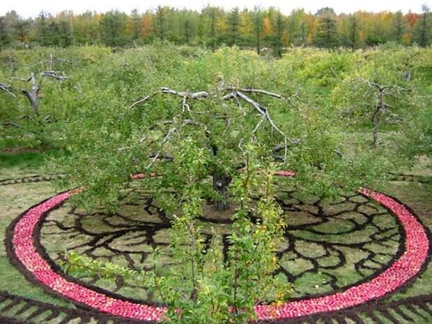 "Лучший ленд-арт конкурса ""Land Art Mont-Saint-Hilaire 2012"" …"