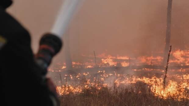 Движение на трассе Екатеринбург — Тюмень было остановлено из-за мощного пожара