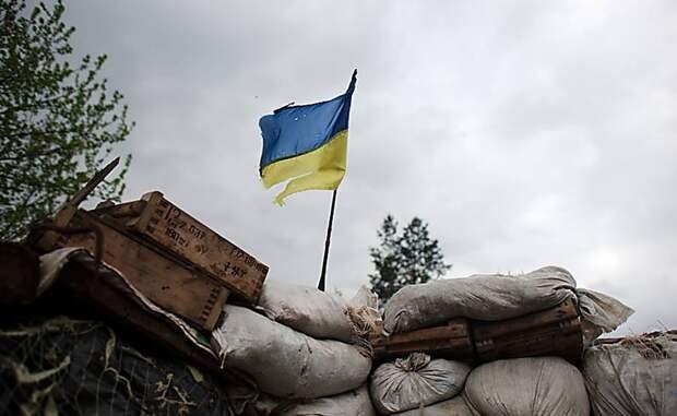 Не моя война: львовский журналист в шоке от нежелания украинцев воевать