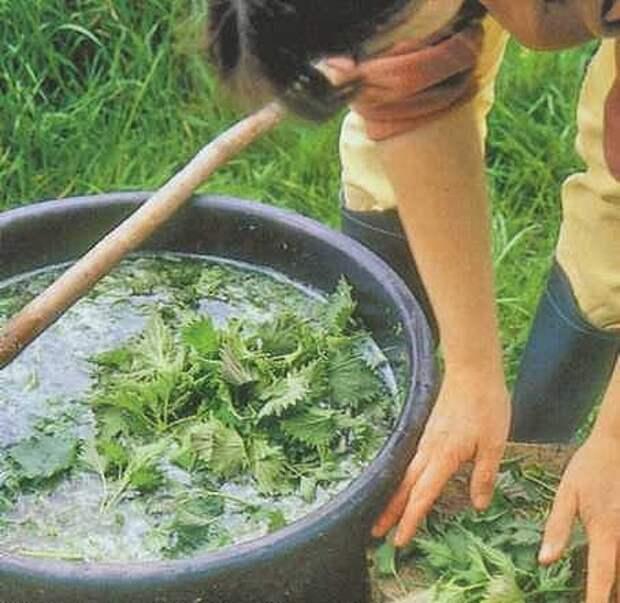 Картинки по запросу удобрение из травы